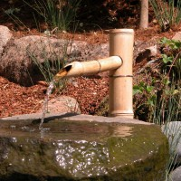 Photo Thumbnail #8: Bamboo spigot spills water into carved stone...