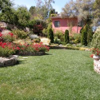Photo Thumbnail #13: Main lawn surrounded by Napa cobble chip stone...