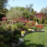 Photo Thumbnail #7: Sommes nous en Provence? J'adore la maison.
