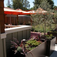 Photo Thumbnail #1: Ore metal planting containers in foreground.
