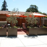 Photo Thumbnail #4: Entry off driveway into patio area.  Planters...