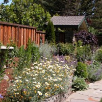 Photo Thumbnail #8: Front garden border.