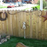 Photo Thumbnail #1: Fence