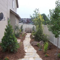 Photo Thumbnail #7: This client had a swamp for a side yard, so we...