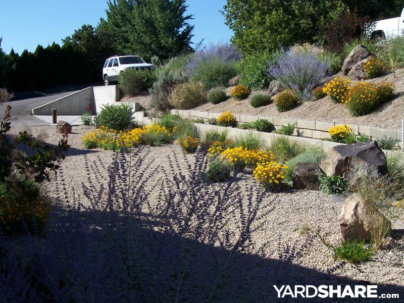 Landscaping Ideas Gt Xeriscapes Amp Waterwise Landscapes
