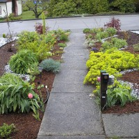 Photo Thumbnail #11: Much better front path now. I love curves!