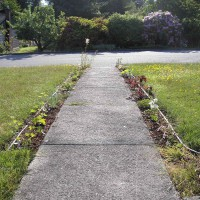 Photo Thumbnail #10: This is a very unimaginative front path which...