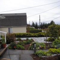 Photo Thumbnail #9: View from the left side at my herb garden....