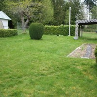 Photo Thumbnail #4: The left side of my yard when I first bought...