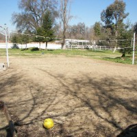 Photo Thumbnail #9: Volleyball court. We capped the 3 sprinklers...