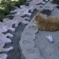 Photo Thumbnail #8: Harry makes sure that the geckos march in line....
