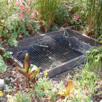 Photo Thumbnail #16: My attempt of a fish pond. Used a plastic...