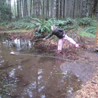 Photo Thumbnail #26: This big winter puddle is perfectly located...
