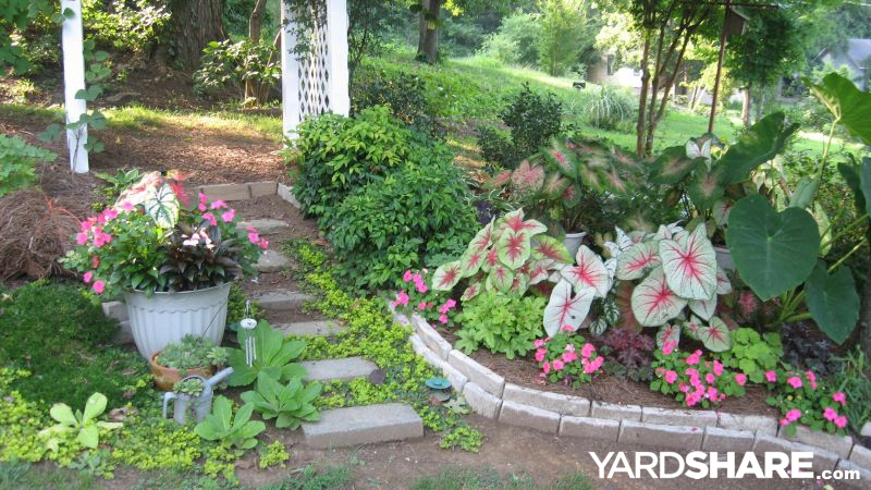 Landscaping Ideas Gt Barb S Haven Yardshare Com