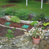 Photo Thumbnail #3: Side yard herb bed.