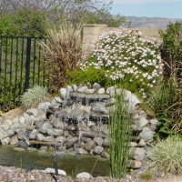 Photo Thumbnail #4: Our first landscape project was to add the...