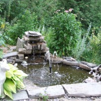 Photo Thumbnail #3: patio garden pond, about 4 feet diameter, with...