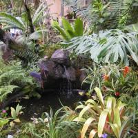 Photo Thumbnail #7: Balboa Park Conservatory San Diego, CA