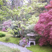 Photo Thumbnail #4: Japanese Garden, Washington Park Arboretum...