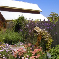 Photo Thumbnail #1: Cambria Florist and Nursery
