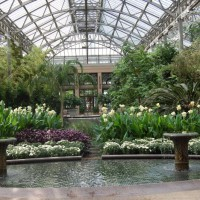 Photo Thumbnail #21: Conservatory, Longwood Gardens, Kennett Square, PA