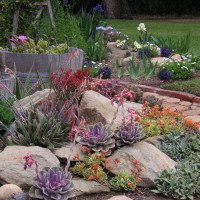 Photo Thumbnail #18: Flower Garden