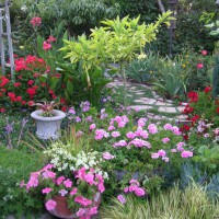 Photo Thumbnail #19: Flower Garden
