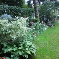 Photo Thumbnail #6: Shaded part of the garden