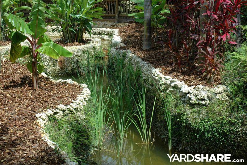 landscaping ideas subtropical garden