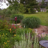 Photo Thumbnail #22: Ditch garden early summer.
