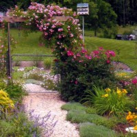 Photo Thumbnail #6: Entrance to back yard from memory garden.
