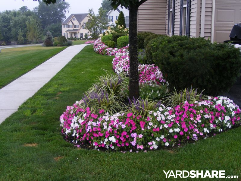 Landscaping Ideas Rocco 39 S Yard