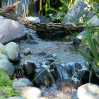 Photo Thumbnail #3: natural falls