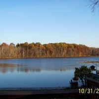 Photo Thumbnail #17: Late fall 2008