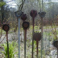 Photo Thumbnail #3: To me, these are seedheads from the alliums....