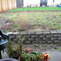 Photo Thumbnail #3: Since this picture was taken a fence has been...