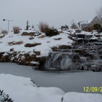 Photo Thumbnail #5: 1st winter