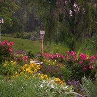 Photo Thumbnail #7: Memory garden summer 2008.