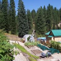 Photo Thumbnail #1: A Mountain Garden