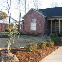 Photo Thumbnail #3: Our new landscaping along our driveway.