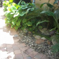 Photo Thumbnail #22: Purchased this little pond on-line, dug the...