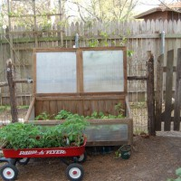 Photo Thumbnail #6: Our cold frame and our side entrance to the...