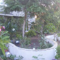 Photo Thumbnail #3: This shows one of the planters across the back....
