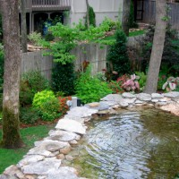 Photo Thumbnail #3: This natural pond was originally put in for the...