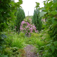 Photo Thumbnail #2: wander threw our formal garden