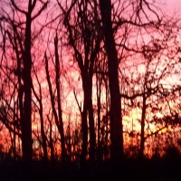 Photo Thumbnail #8: One of the most beautiful sunsets..January 2009
