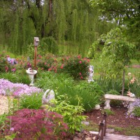 Photo Thumbnail #3: Memory garden.