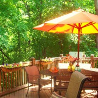 Photo Thumbnail #3: back yard is a canopy of trees