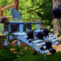 Photo Thumbnail #1: painted chairs from black to blue