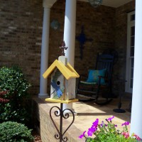 Photo Thumbnail #7: new bird feeder